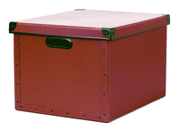 Image cargo® Naturals Dual File Box, Red Spice